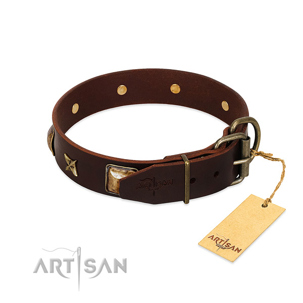 Full grain natural leather dog collar with corrosion proof fittings and decorations