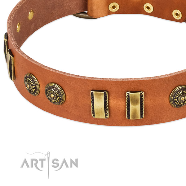 Durable fittings on natural leather dog collar for your pet