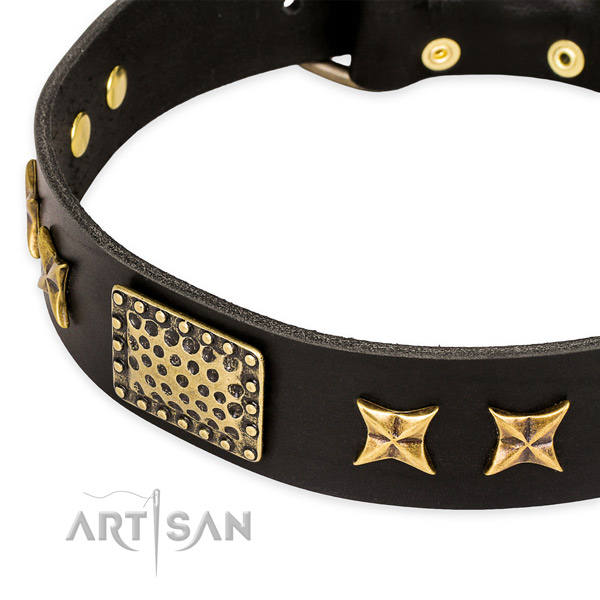Full grain natural leather collar with rust-proof fittings for your lovely four-legged friend