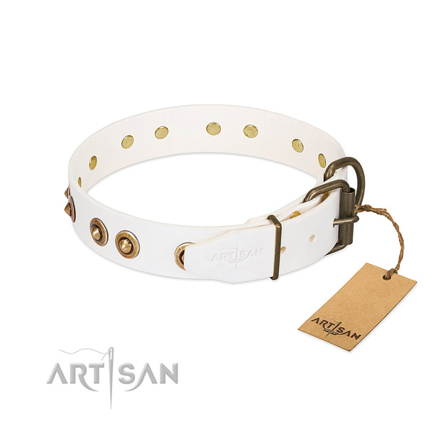 Rust-proof adornments on genuine leather dog collar for your doggie