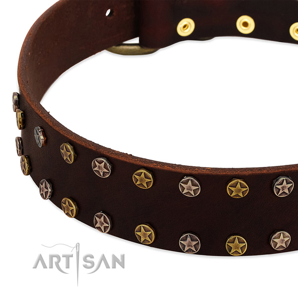 Daily use full grain genuine leather dog collar with unique embellishments