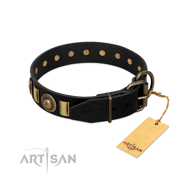 Strong full grain natural leather dog collar with embellishments