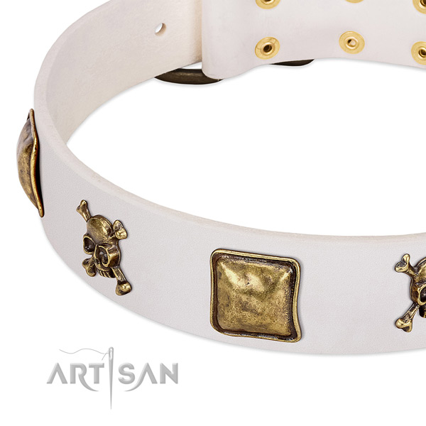 Easy wearing full grain natural leather dog collar with fashionable studs