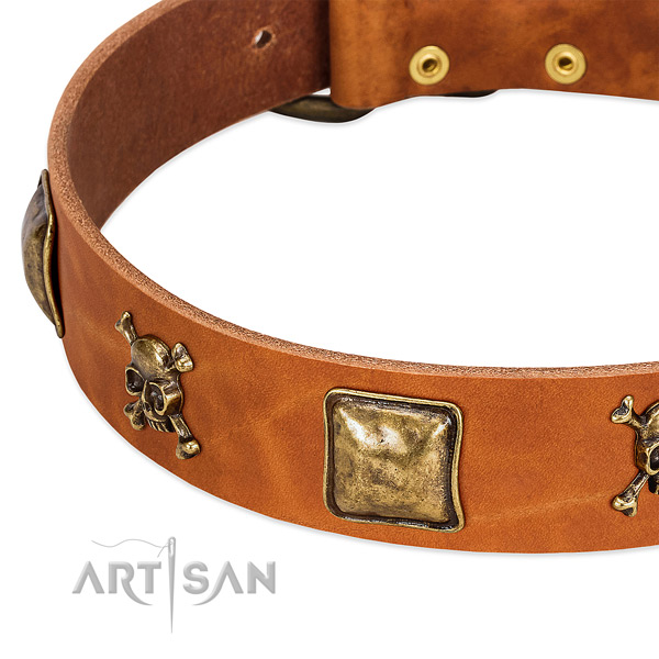 Inimitable genuine leather dog collar with rust-proof decorations