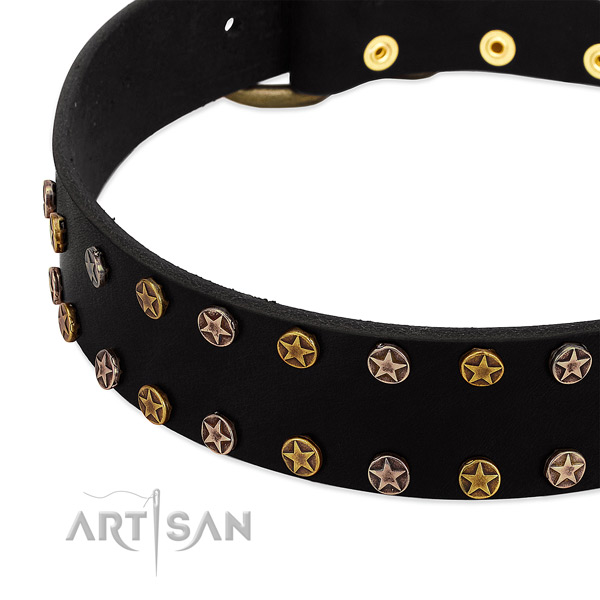 Remarkable decorations on natural leather collar for your four-legged friend
