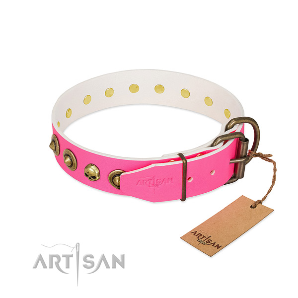 Full grain genuine leather collar with unique adornments for your canine