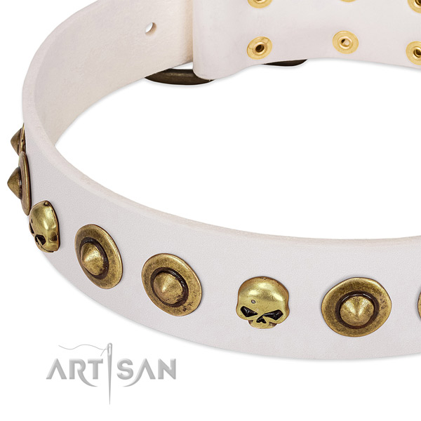 Incredible adornments on full grain natural leather collar for your four-legged friend