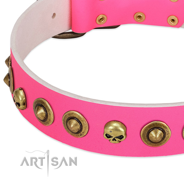 Unique decorations on natural leather collar for your four-legged friend