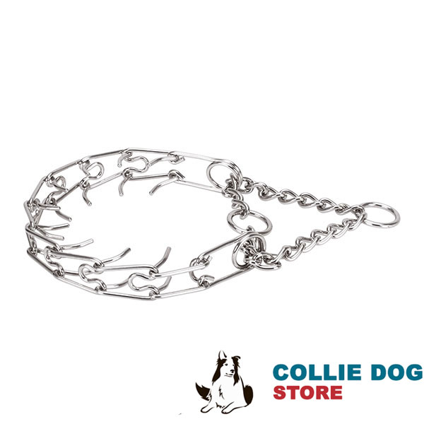 Strong prong collar with stainless steel O-ring for attaching a leash