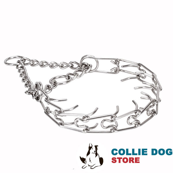 Prong collar of durable stainless steel for ill behaved pets