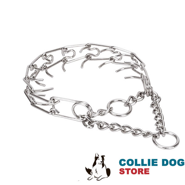 Pinch collar of corrosion resistant stainless steel for ill behaved canines