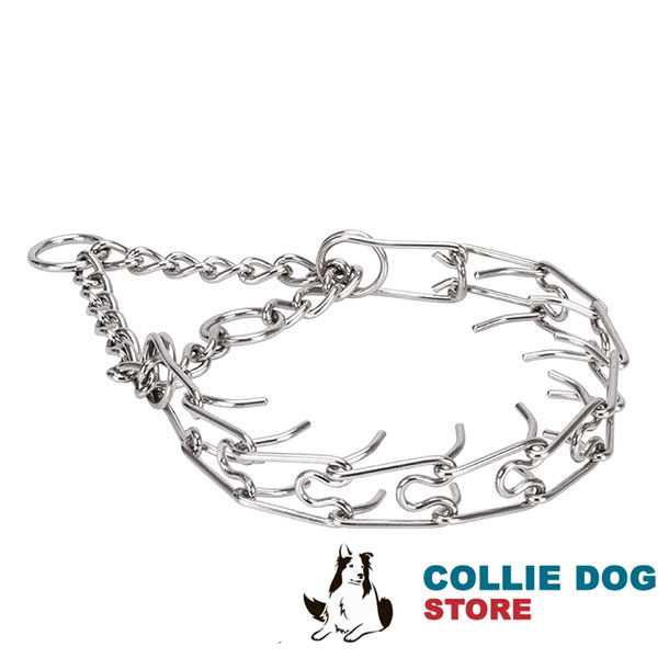 Pinch collar of rust proof stainless steel for ill behaved dogs