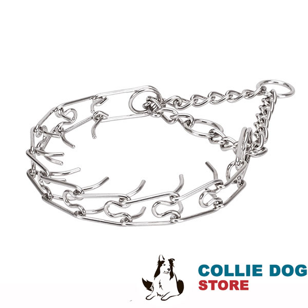 Prong collar with rust proof O-ring of stainless steel