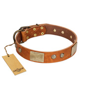 """Ancient Treasures"" FDT Artisan Tan Leather Collie Collar with Antiqued Plates and Studs"