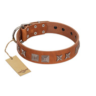 """Antique Figures"" FDT Artisan Tan Leather Collie Collar with Silver-like Engraved Plates"