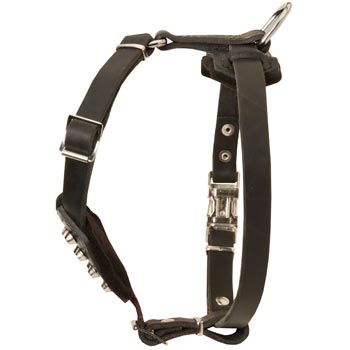Leather Collie Puppy Harness for Comfy Walking