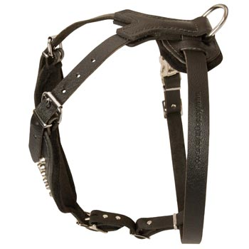 Custom Made Leather Collie Harness