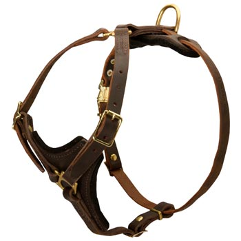 Collie Harness Y-Shaped Brown Leather Easy Adjustable for Best Fit
