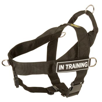 Collie Nylon Harness with ID Patches