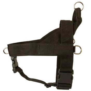 Collie Harness Nylon for Comfy Walking