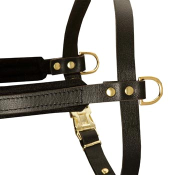 Training Pulling Collie Harness with Sewn-In Side D-Rings