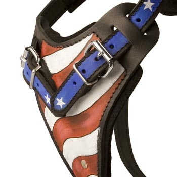 Collie Leather Harness With Hand Painted USA  Chest Plate