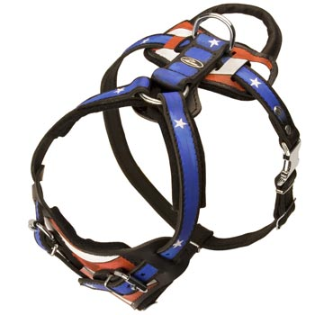 Leather SCollie Harness with Handle Stitched to Back Plate