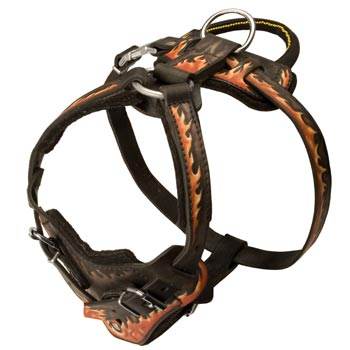 Leather Dog Harness with Handle for Collie Training
