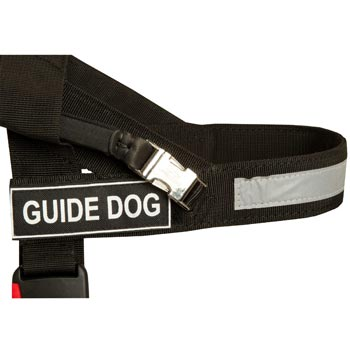 Collie Nylon Assistance Harness with Patches