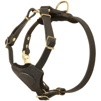 Light Weight Leather Puppy Harness for Collie