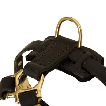 D-ring on Leather Collie Harness for Puppy Training