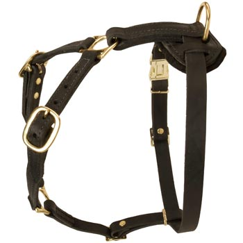 Tracking Leather Dog Harness for Collie