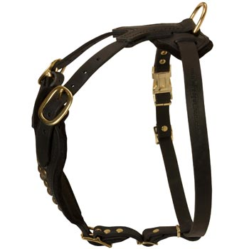 Easy Adjustable Leather Collie Harness