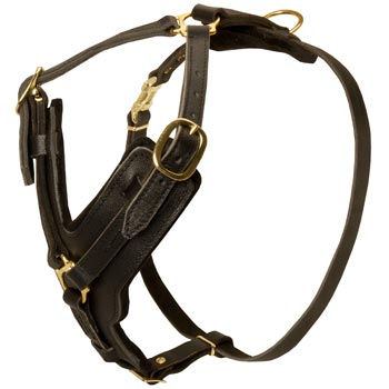 Comfortable Y-Shaped Leather Harness for Collie Attack  Training