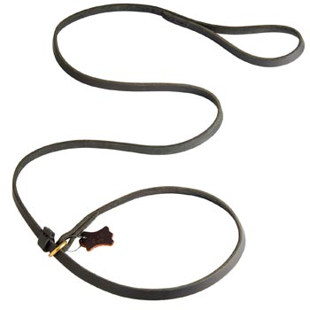 Best Choke Leather Collie Collar and Leash