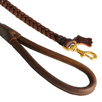 Braided Leather Collie Leash with Brass Snap Hook