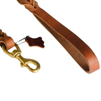 Collie Leather Leash for Canine Service