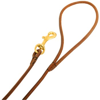 Leather Collie Leash with Comfy Round Handle