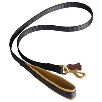 Special Nylon Dog Leash Comfortable to Use for Collie