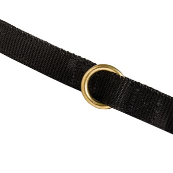 Nylon Collie Leash Solid Brass Ring