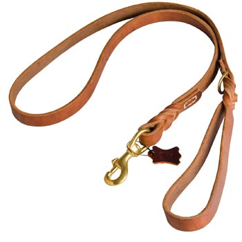 Canine Leather Leash for Collie