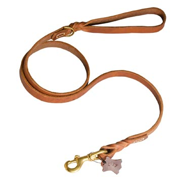 Training Leather Collie Leash with Handle