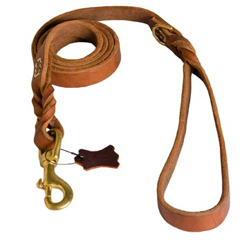 Leather Leash for Collie Successful Schutzhund Training