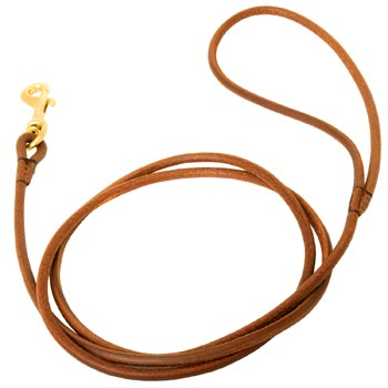 Leather Round Leash for Collie Elegant Look