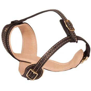 Collie Muzzle Leather Easy Adjustable with Quick Release Buckle