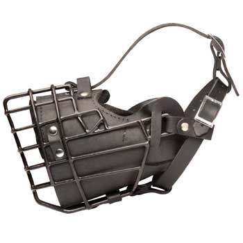 Leather Collie Muzzle Padded Metal Basket