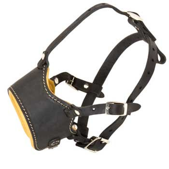 Leather Collie Muzzle for No Bark Training Walking