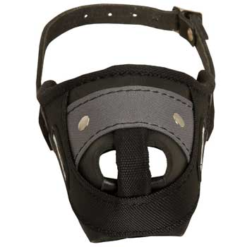 Nylon and Leather Collie Muzzle with Steel Bar for Protection Training