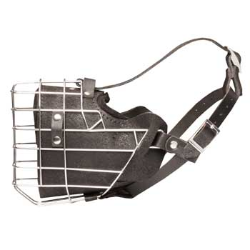 Leather Basket Collie Muzzle