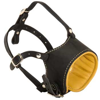 Adjustable Collie Muzzle Padded with Soft Nappa Leather for Anti-Barking Training